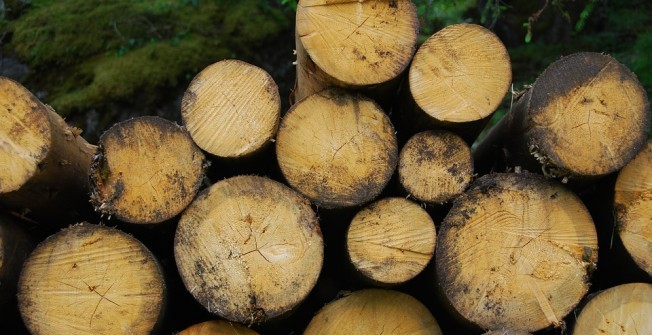 Biomass Pros and Cons in Abbey Wood